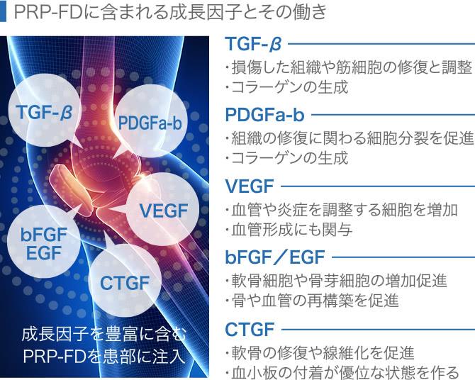 PRP-FDに含まれる成長因子とその働き